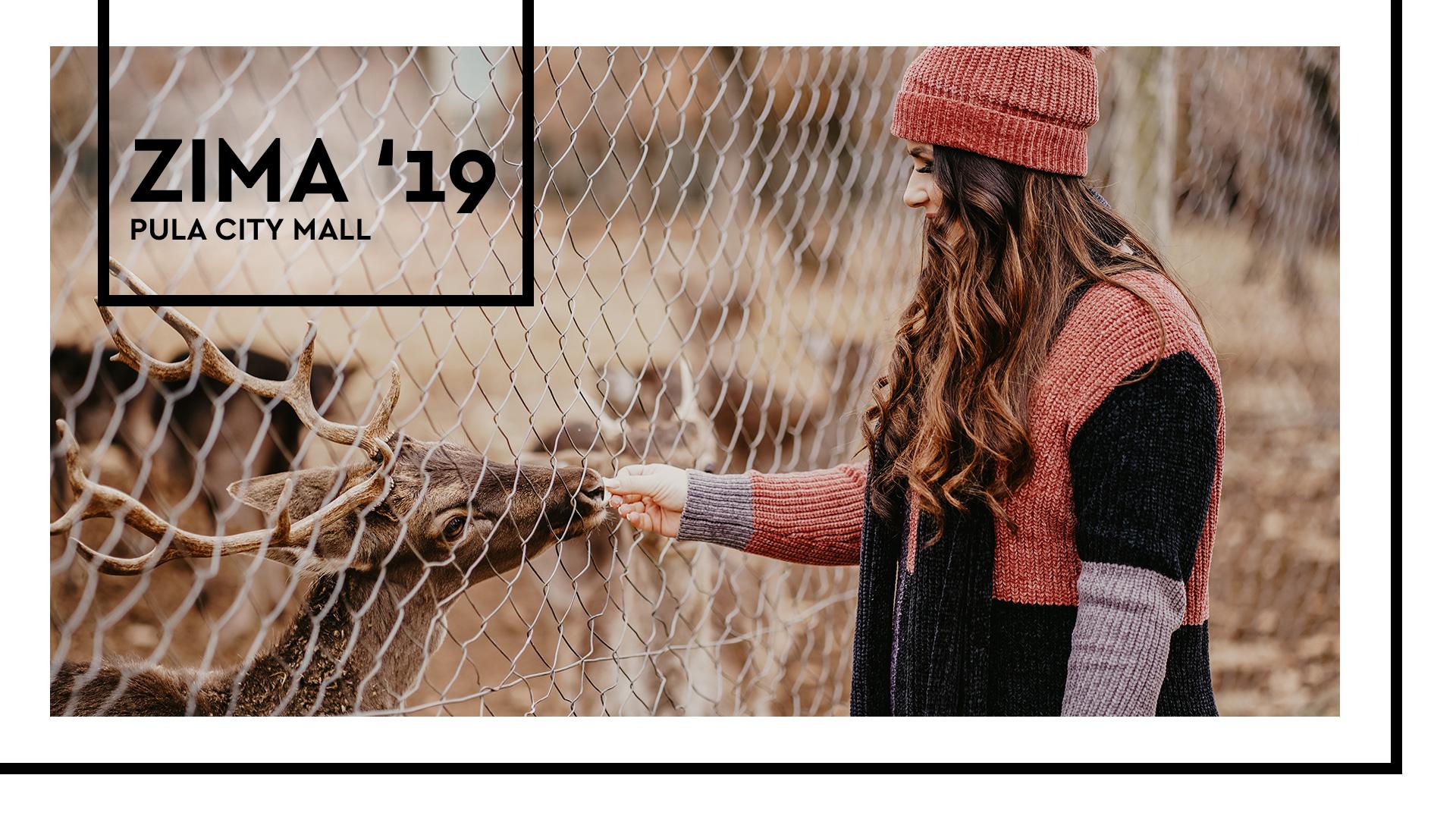 zima2019_webcover1